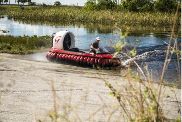 REPORTAGE: Bland alligatorer och sköldpaddor i Everglades