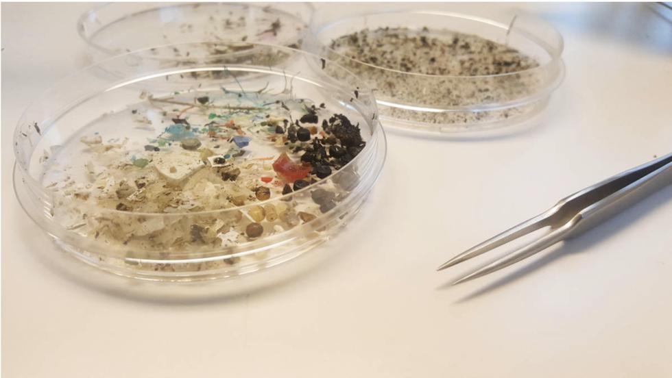 Ny avhandling om plast i haven