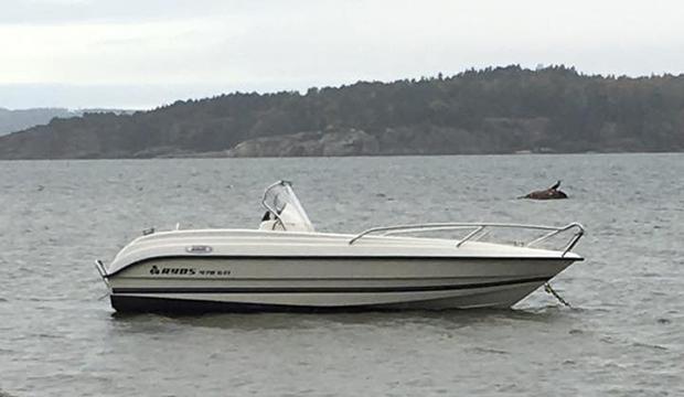 Stulna och slaktade båtar upphittade – känner du igen dem?